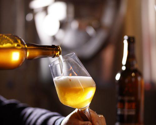 Dégustation-bière-magnifique-scaled.jpg